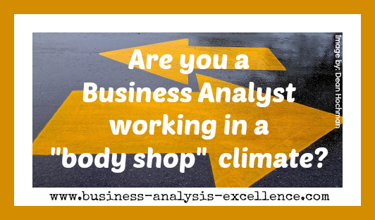 business analysis resource