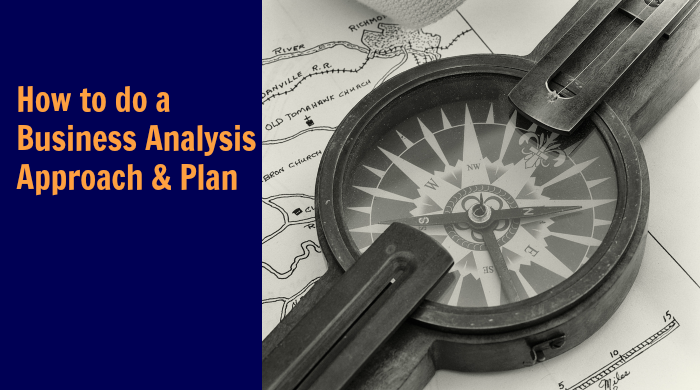 business analysis approach and plan3