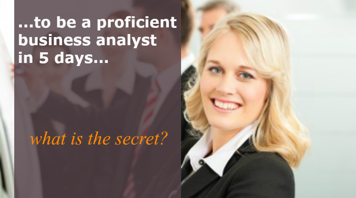 proficient Business Analyst
