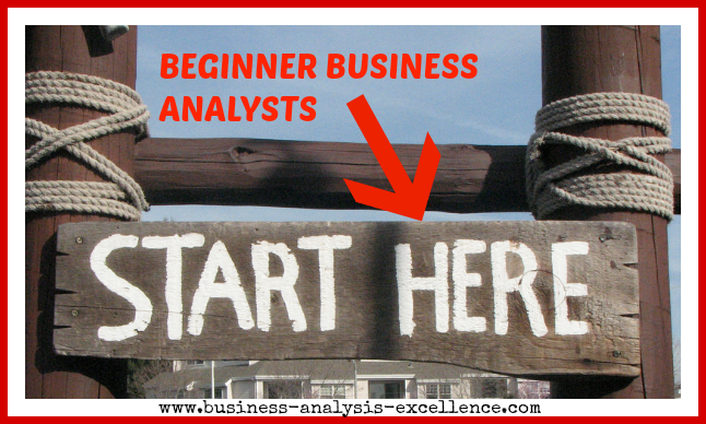 Beginner Business Analysts
