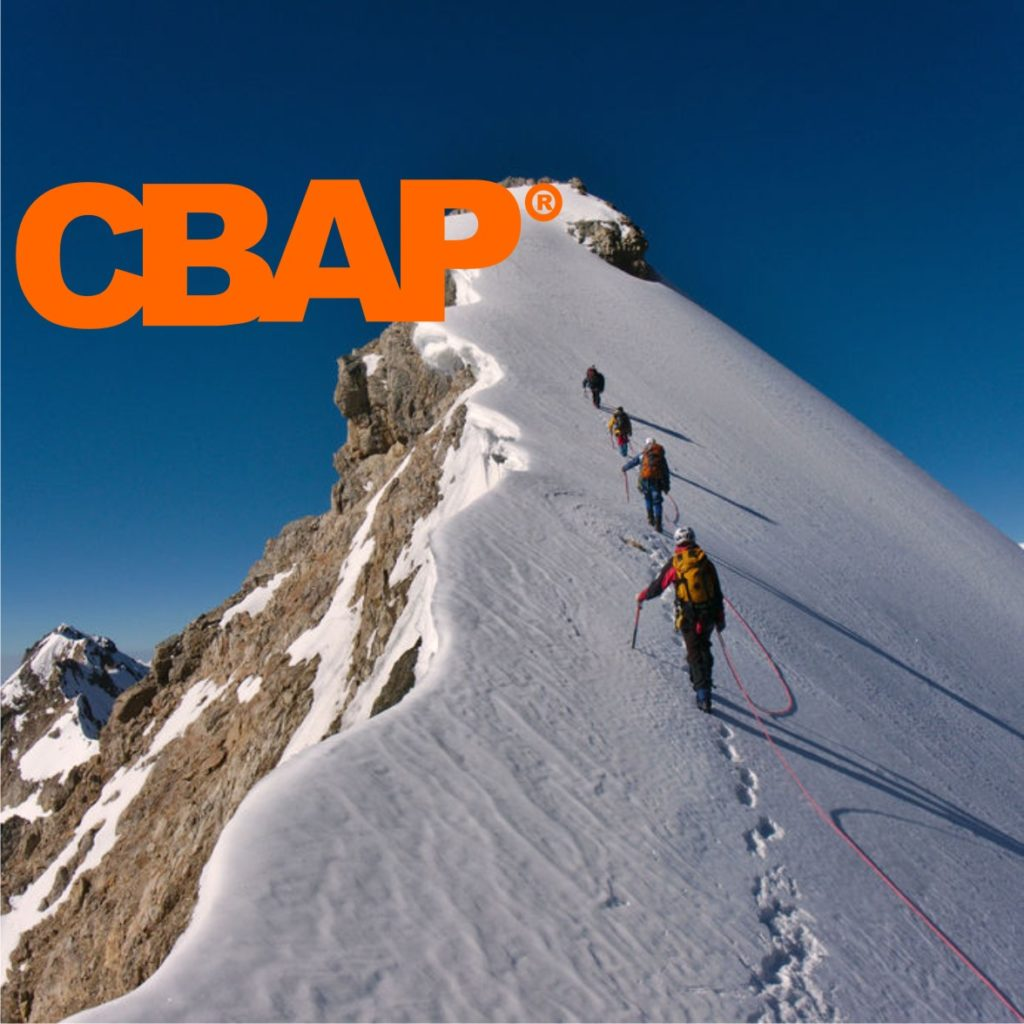 Cbap Business Analysis Excellence